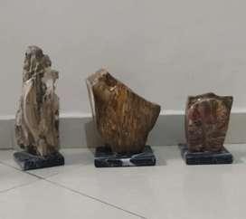 Juegos de esculturas en Madera petrificada