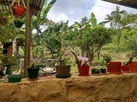 Vendo hermosa finca en Cachipay, Cundinamarca