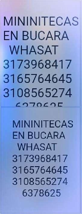 Alquiler d3 Miniteca 3173968417