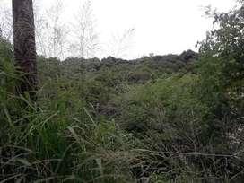 Mendiolaza valle del sol