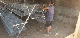 Somos fabricantes de jaulas para gallinas ponedoras y jaulas de levante