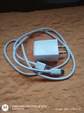 Cargador doble entrada con cable tipo C