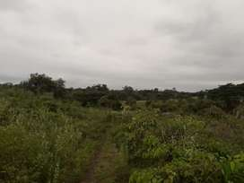 Terreno Colimes Guayas