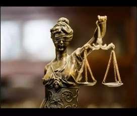 Asesoría legal y redacción de documentos - Conceptos juridicos