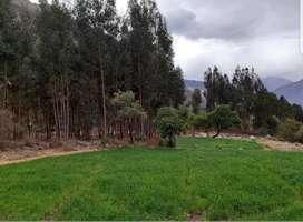 Venta  de terreno  en el  Valle sagrado,Urubamba,Cusco