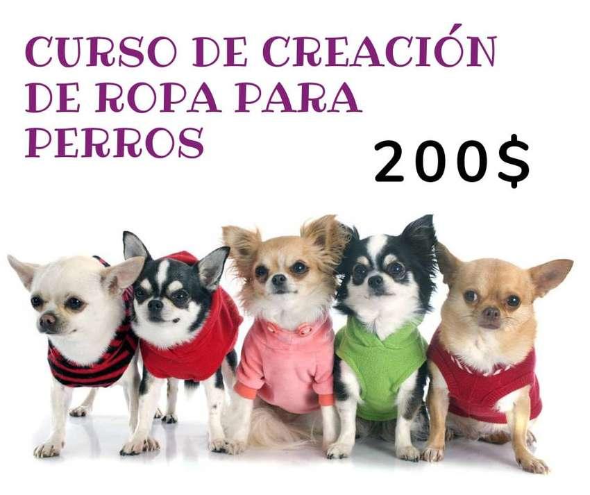 Curso creación de ropa para perros