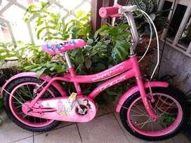Bicicleta  para niña GW PRINCESA