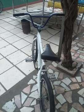 Bicicleta rodado 20 , nene