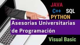 Ayuda en proyectos de algoritmia, programación tutorías universitarias java c++ pseint visual basic sql c# python dev cp