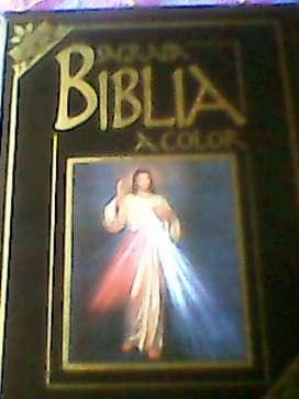 se vende una biblia colores