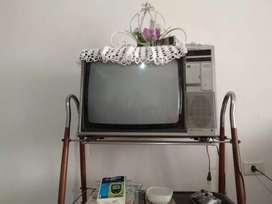 Televisor chico
