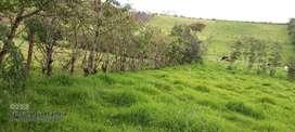 Terreno en Pintag