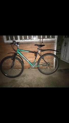 Bicileta normalita modificada