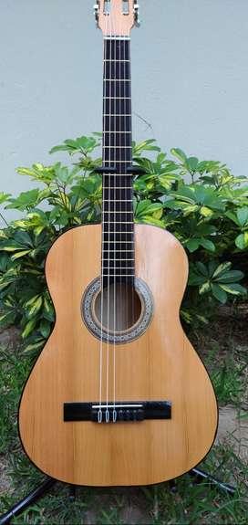 Guitarra acústica - Nueva