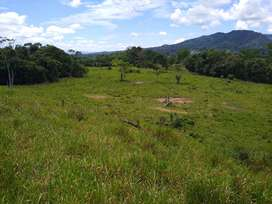 Vendo terreno para ganaderia