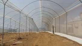 Construccion y mantenimiento de todo tipo de invernaderos