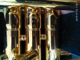 Trompeta Profesional Yamaha YTR 4335 GII