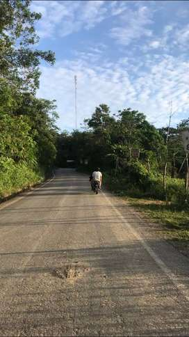 Vendo terreno 1.5 hectarea carretera san roque a 25 min de Tarapoto