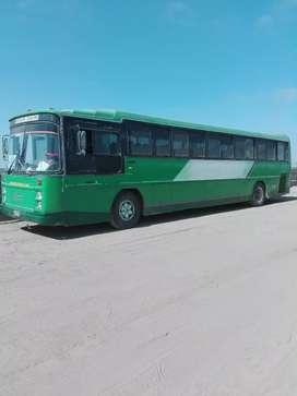 VENDO BUS 50 PASAJEROS