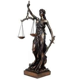 OFREZCO  MIS SERVICIOS COMO AUXILIAR JURIDICO - DEPENDIENTE JUDICIAL