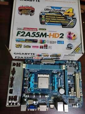 Placa + procesador