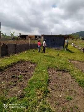 Se vende terreno en oyambarillo