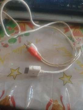 Cable de Audio Apple