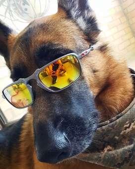 Gafas para todos los gustos