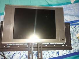 Se vende mini televisor TECH. ISION