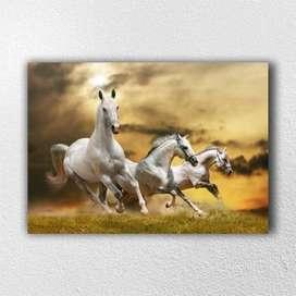 Cuadro en lienzo - Caballos - Caballos Blancos en la Sabana - 70x50 centímetros