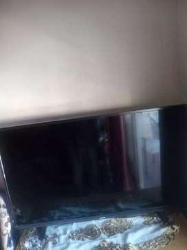 TV sansei 49