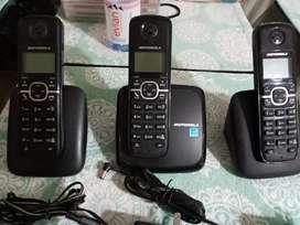 Telefonos de oficina motorola
