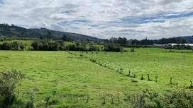 Venta Terreno Industrial 16 Has - Pozo de Agua - Tambillo / m² $39, $35 y $29