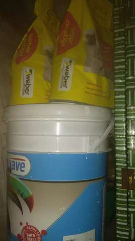 Pintura tersuave lavable nueva y pastina