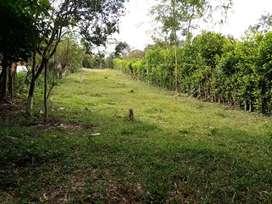 SE VENDE O PERMUTA LOTE - VÍA RUITOQUE BAJO (FLORIDABLANCA)