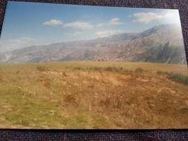 Terreno agricola en carhuaz acopampa