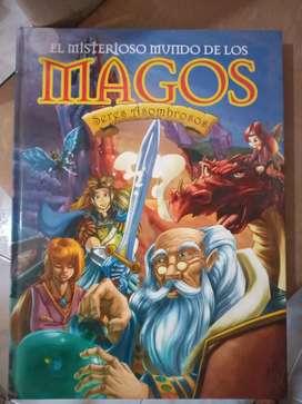 El misterioso mundo de los magos