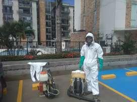 Fumigación para viviendas locales comerciales y sectores industriales