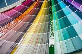 venta de pintura base agua para pared todos los colores
