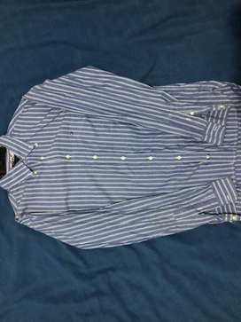Camisas Tommy hilfiger (USADAS)