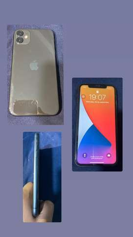 Iphone 11 normal