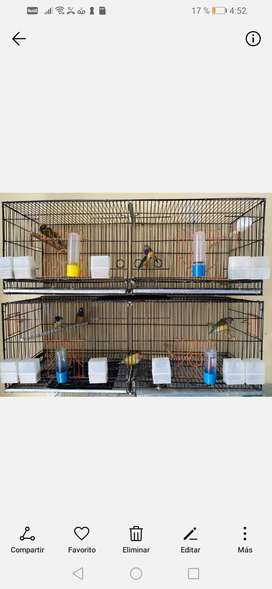 Vendo jaula amplia doble, ideal para cria o como voladera,