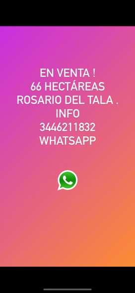 Se venden 66 Hectáreas en Rosario del tala.