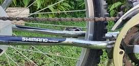 Bicicleta todo terreno rodado 26 18 velocidades