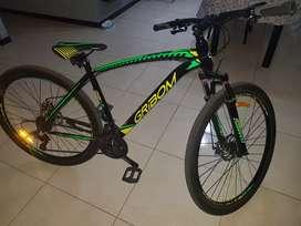 Bicicleta rodado 29 con papeles