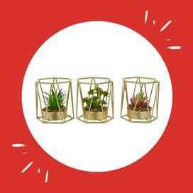 Planta Artificial Concepts  3 Piezas - Doradas