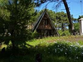 Cabaña Alpina Pehuen co