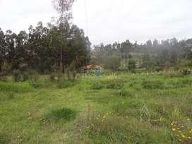 Terreno, sitio en venta en 6 Hectáreas sector Chuquipata 40dlrs el M2.