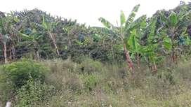 Lote en venta heliconia Antioquia