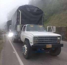 Se vende camión